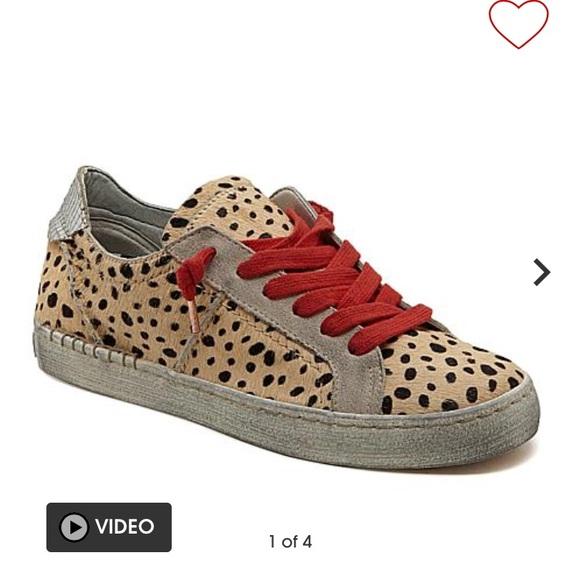 015c993d6d75 Dolce Vita Shoes - Dolce vita zalen leopard print sneaker